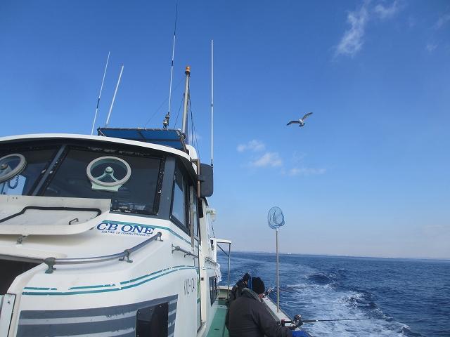 20130220釣りへ (35)