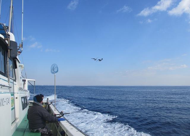 20130220釣りへ (37)