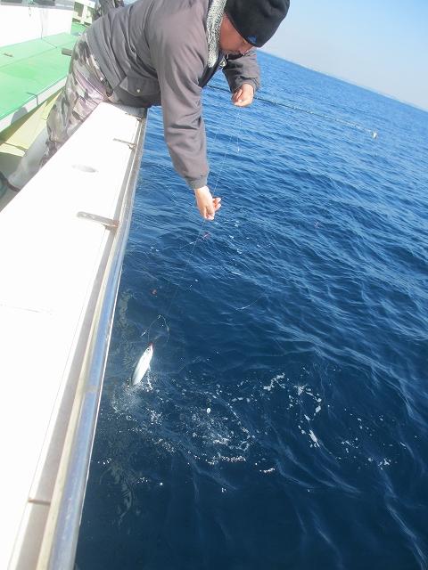 20130220釣りへ (46)
