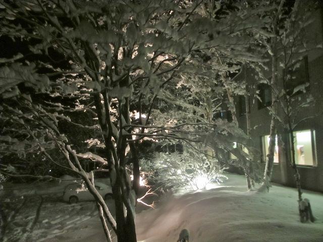 20130215帰ると大雪 (10)