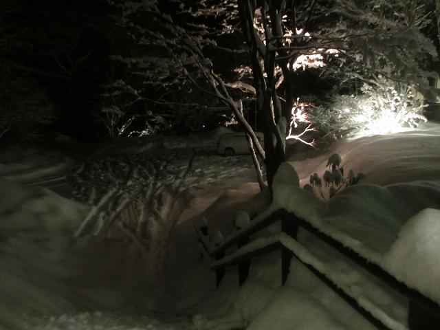 20130215帰ると大雪 (11)