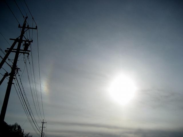 20130226太陽の光 (1)