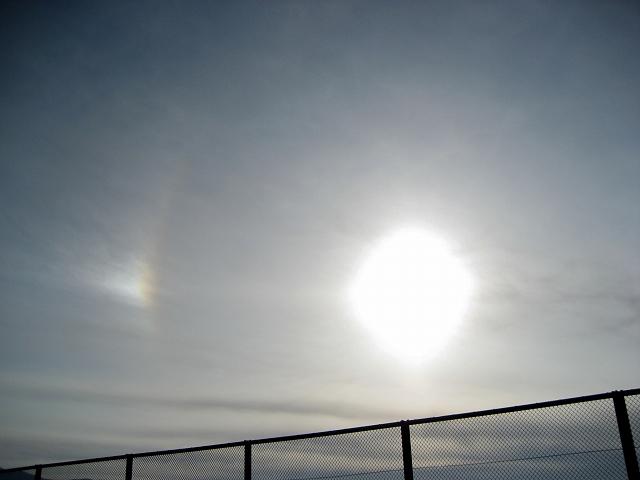 20130226太陽の光 (4)