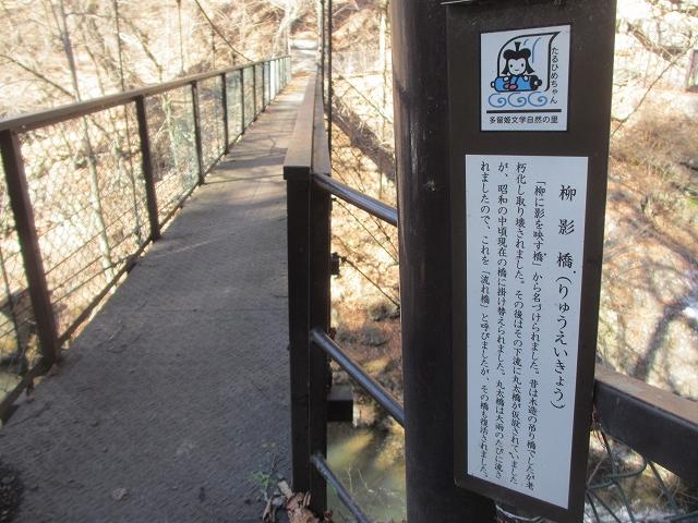 20130312多留姫の滝 (97)