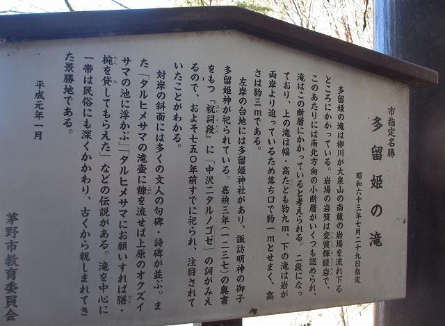 20130312多留姫の滝 (91)