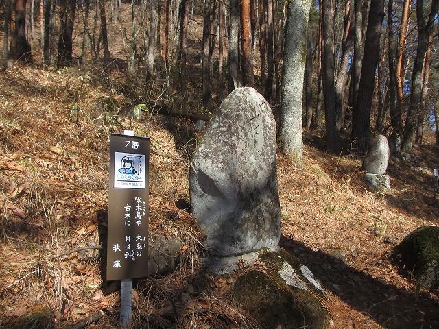 20130312多留姫の滝 (20)