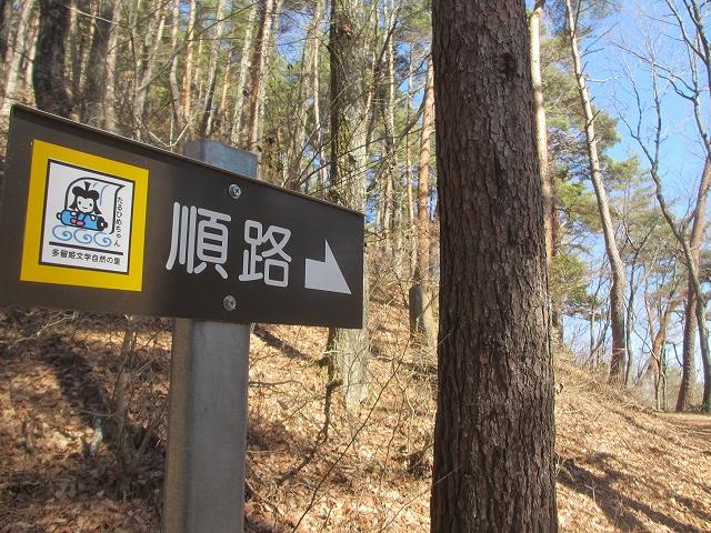 20130312多留姫の滝 (25)