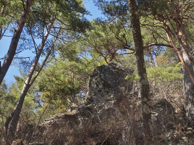 20130312多留姫の滝 (29)