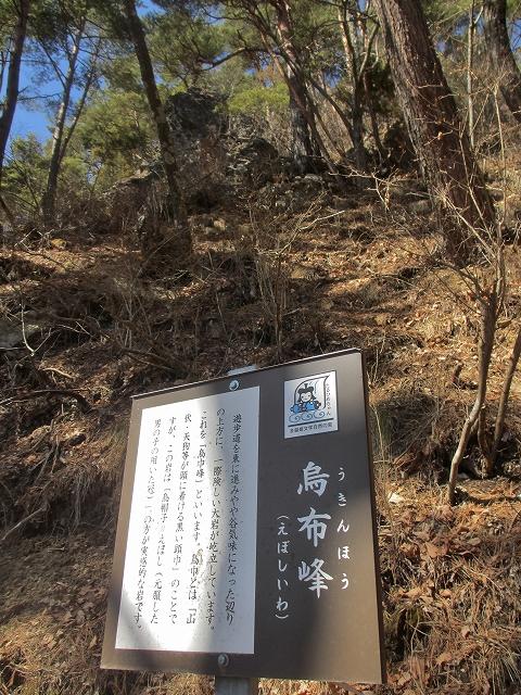 20130312多留姫の滝 (28)
