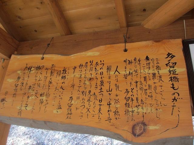 20130312多留姫の滝 (80)