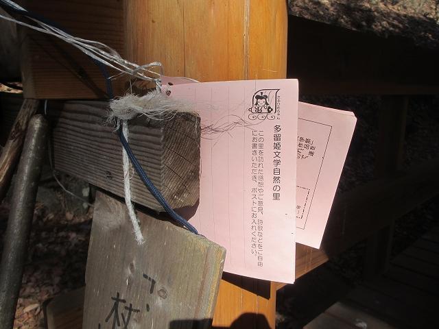 20130312多留姫の滝 (73)