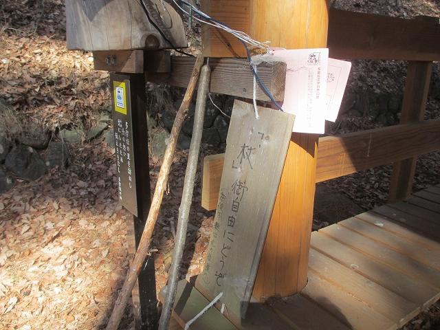 20130312多留姫の滝 (71)