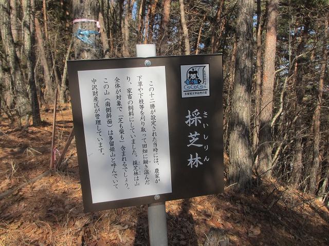 20130312多留姫の滝 (57)