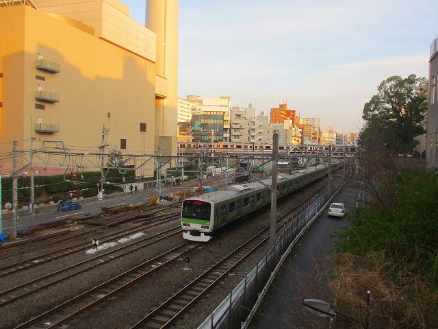 20130315渋谷 (19)