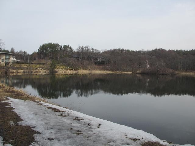 20130320桜のつぼみ縄文の湯 (7)