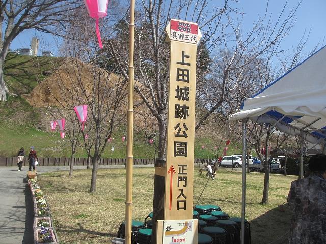 20130405上田千本桜 (7)