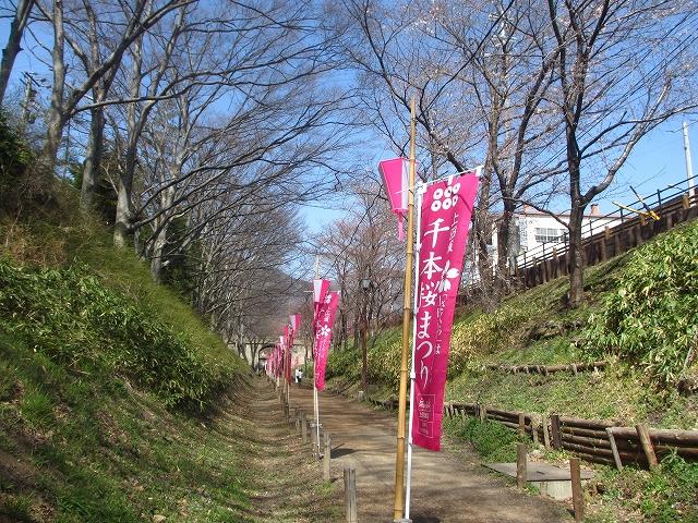 20130405上田千本桜 (9)