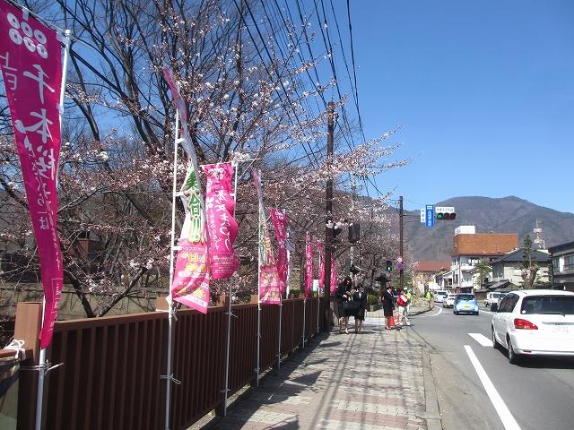 20130405上田千本桜 (10)