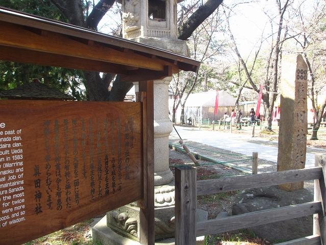 20130405上田千本桜 (16)