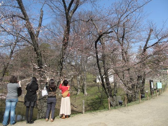 20130405上田千本桜 (76)