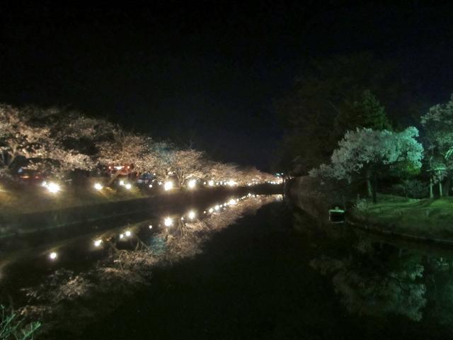 20130405松本城の夜桜前日 (26)