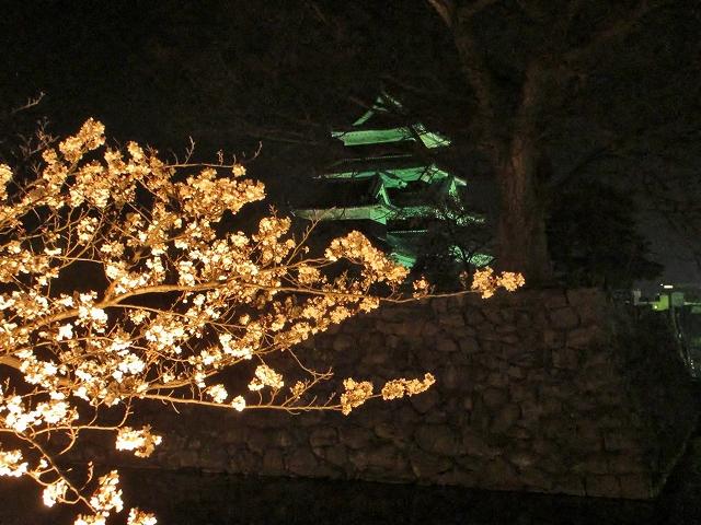 20130405松本城の夜桜前日 (51)