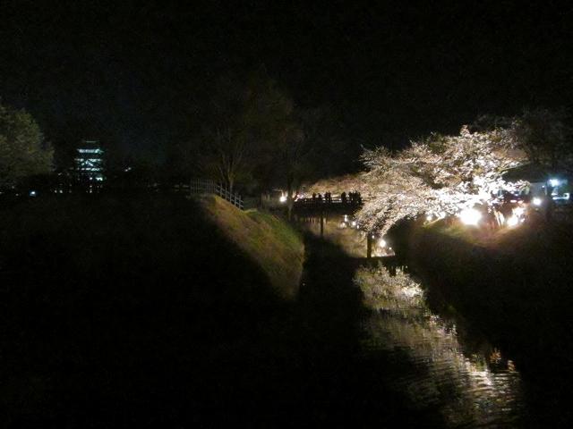20130405松本城の夜桜前日 (65)