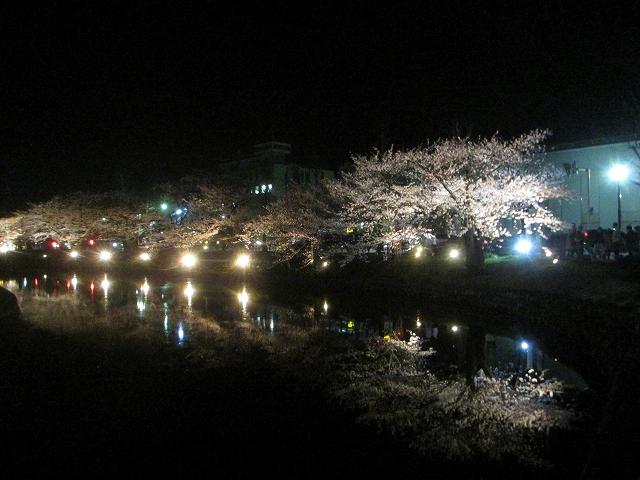 20130405松本城の夜桜前日 (70)