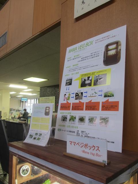 20130404諏訪市役所 (6)