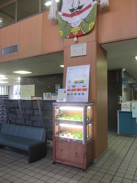 20130404諏訪市役所 (7)