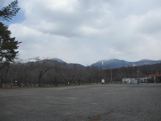 20130412聖光寺もう少し (1)