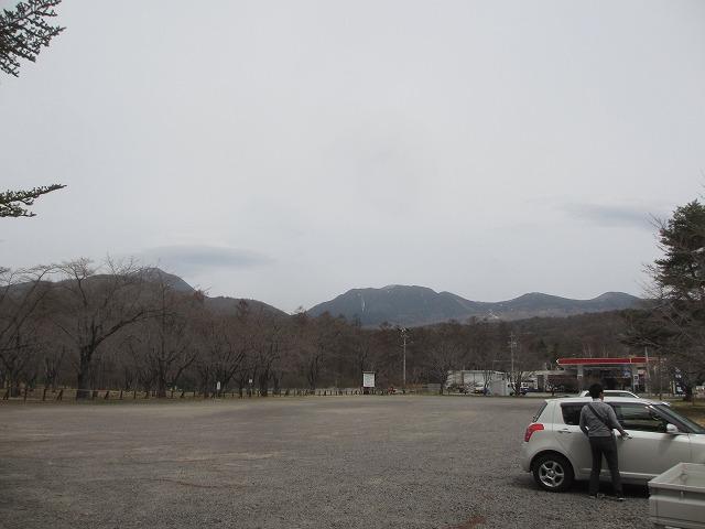 20130417聖光寺の (3)