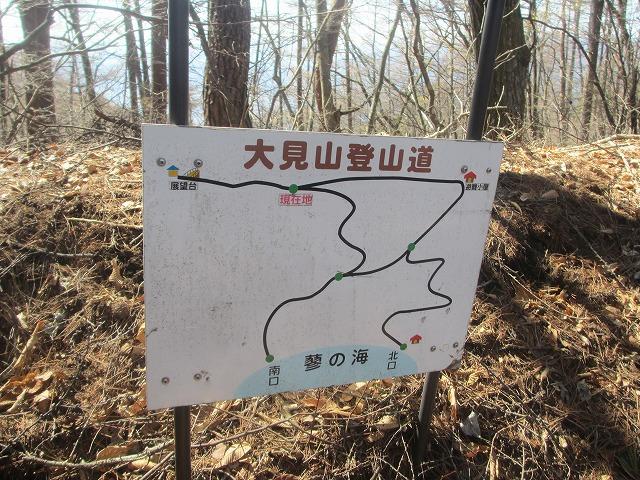 20130413大見山展望デッキ (15)