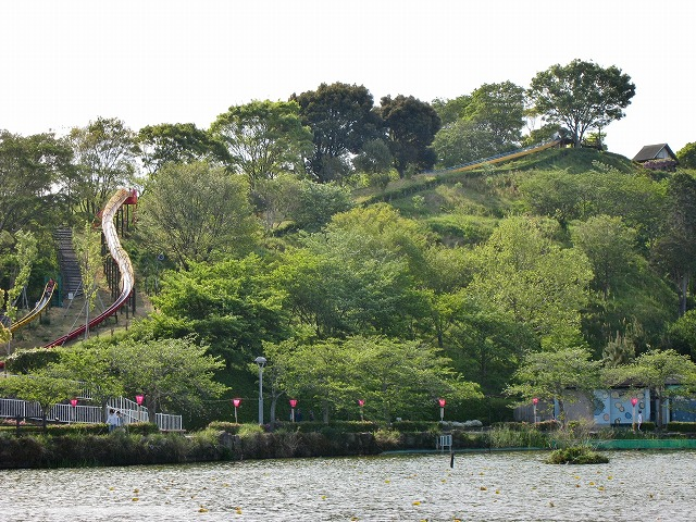 20130420藤枝の蓮華寺池公園 (3)