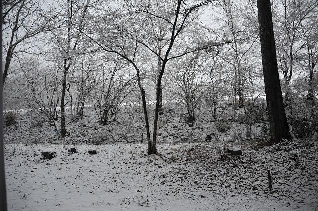 20130421澤井さんから悠心荘の朝の雪 (2)