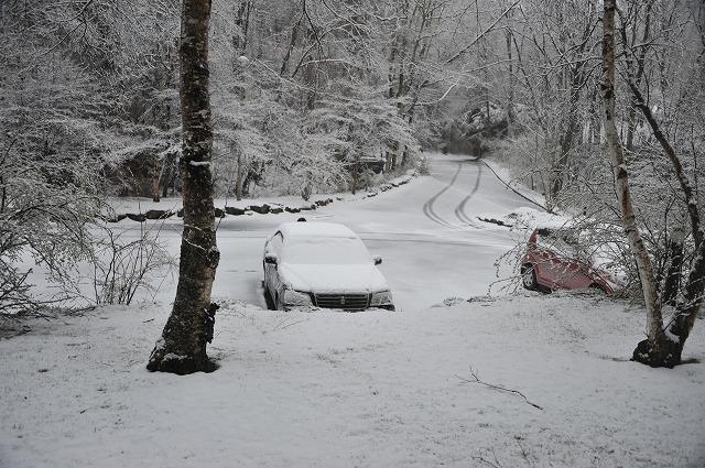 20130421澤井さんから悠心荘の朝の雪 (3)