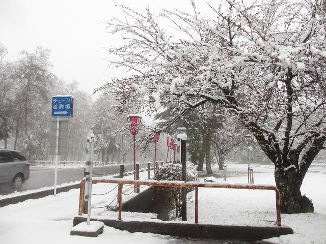 02130421雪の聖光寺 (19)