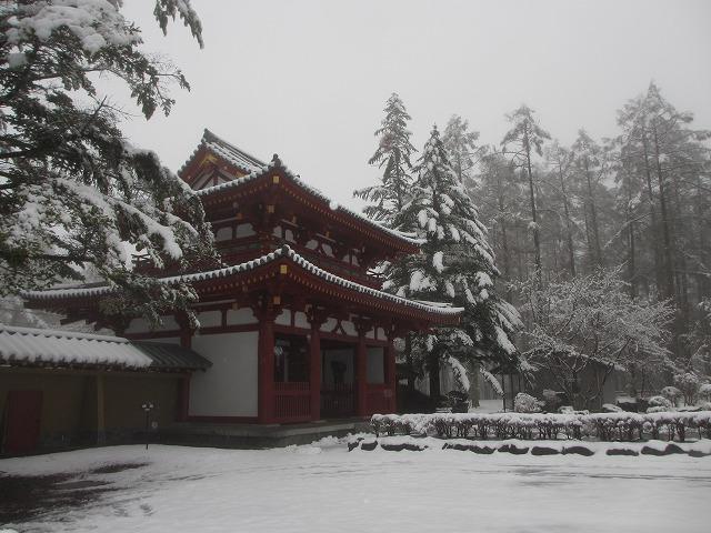 02130421雪の聖光寺 (12)