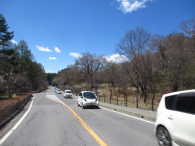20130503聖光寺の桜満開へ (33)