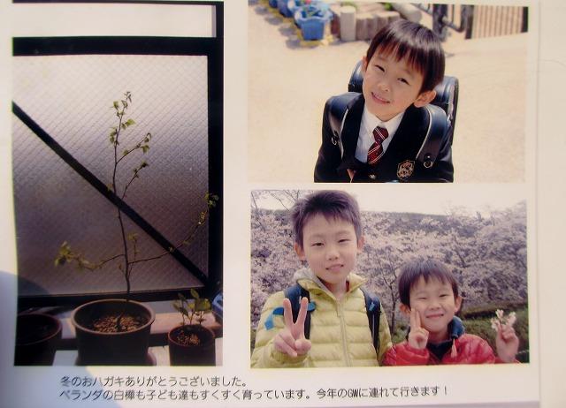 20130505秋山さんはがき