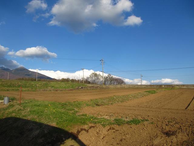 20130427バディアス農園 (7)