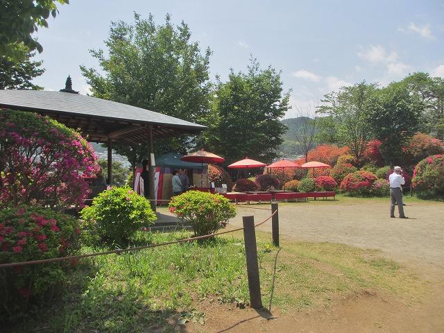 20130516鶴嶺公園のツツジ (17)