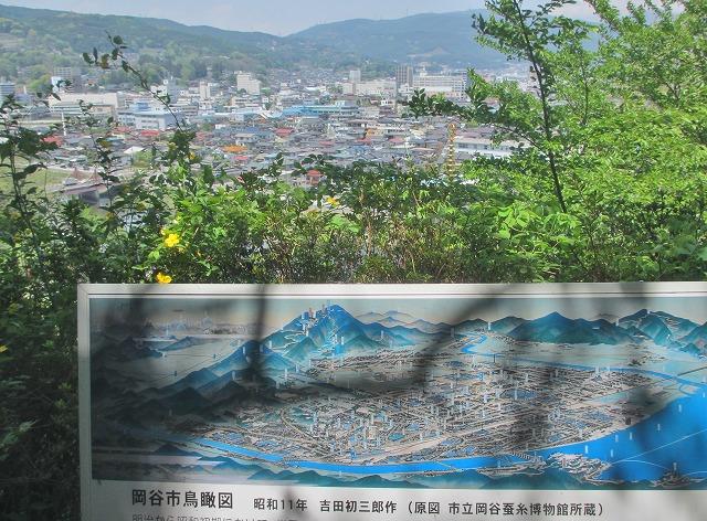 20130516花岡公園 (12)