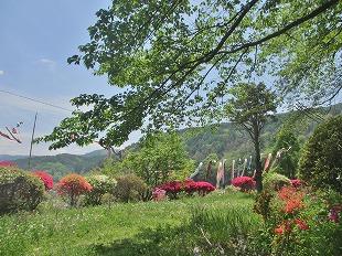 20130516花岡公園 (9)