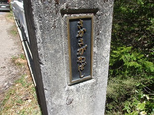20130517みどりの川 (18)