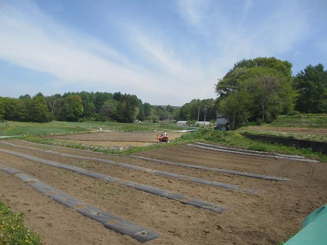 20130518バディアス農園始動 (1)
