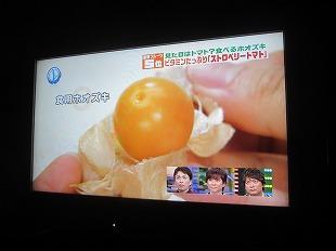 20130518スマステに鈴木さん (12)