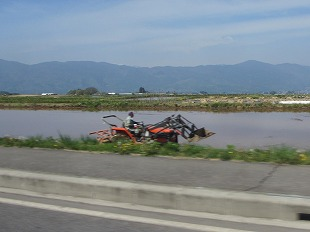 20130518田植えの風景 (4)