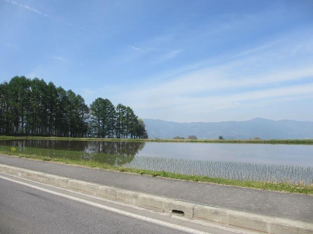 20130518田植えの風景 (5)
