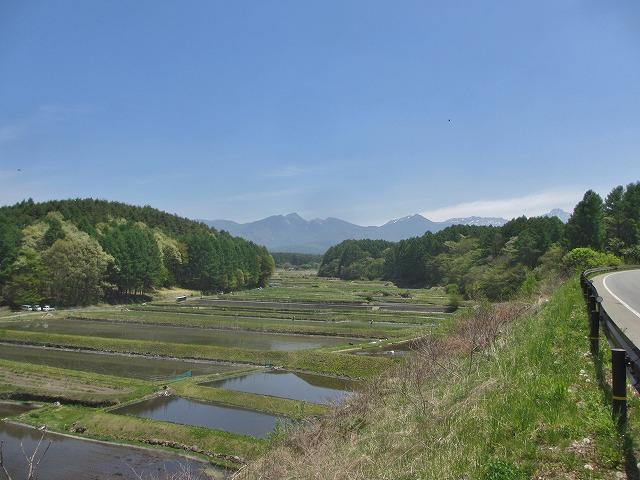 20130518田植えの風景 (12)